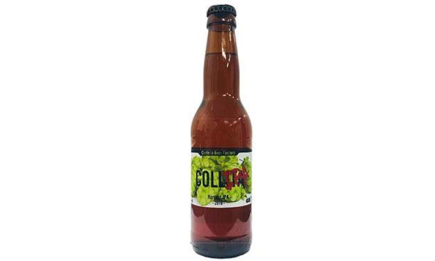 Collipa: la primera cerveza elaborada íntegramente con lúpulos del Maestrat