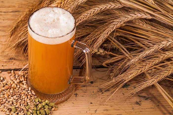 maltas ingredientes cerveza destacado