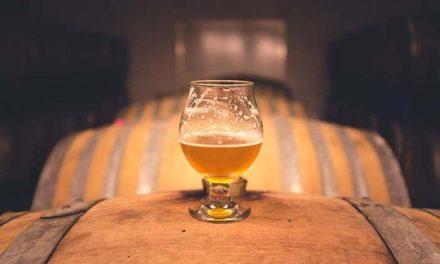 Análisis de cerveza: curso de formación técnica