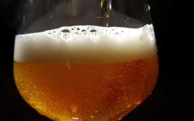 Curso de Gestión Sensorial e Introducción a la Cultura de las Cervezas